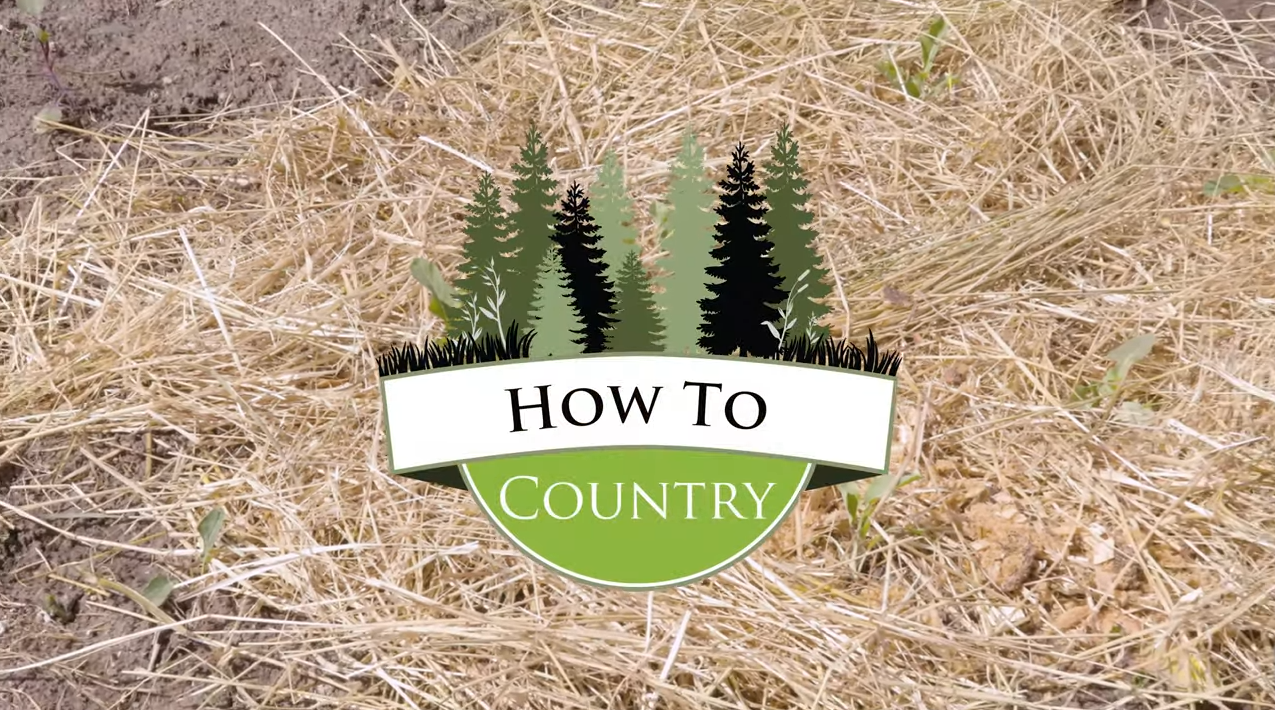 Skills for Country Living