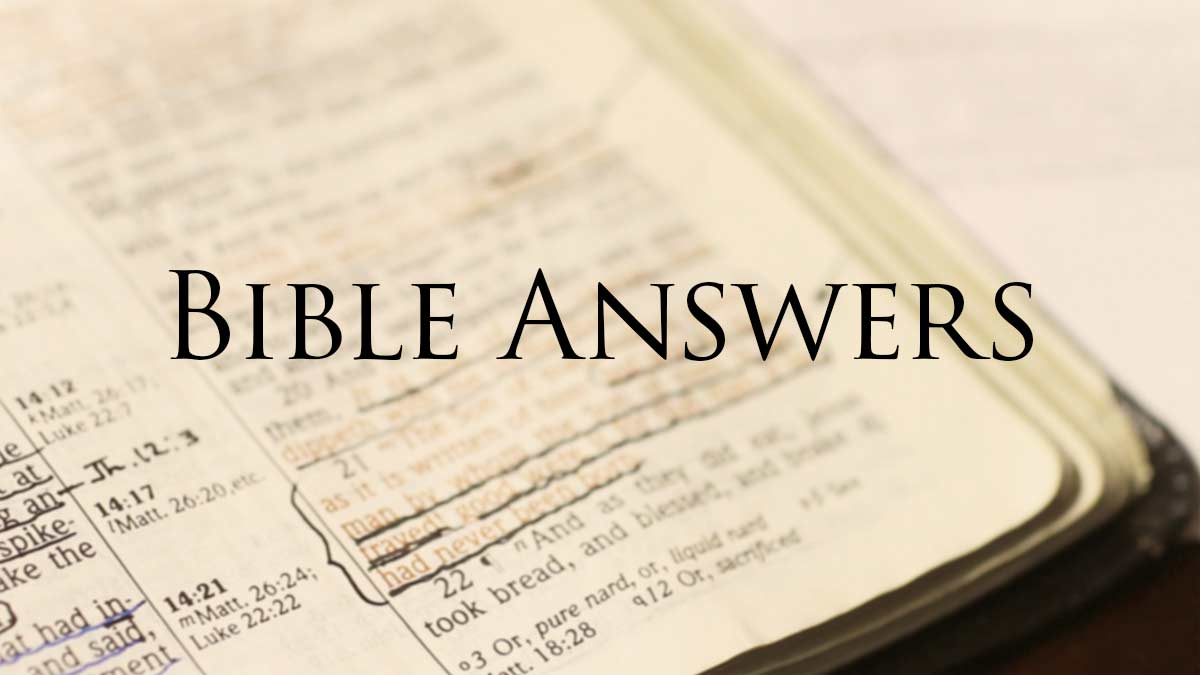 Bible Study Questions Answered