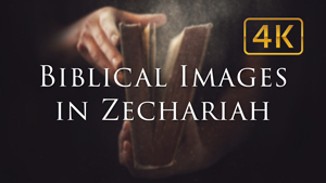 The Meaning of Biblical Images in Zechariah